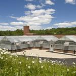 Harvard- Weld Hill Project- LEED Gold greenhouses [KlingStubbins project]